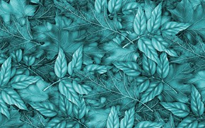 Picture leaves, background, blue, background