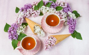 Picture branches, tea, lilac