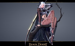 Picture Girl, Dark Elf, Dark Knight, Black Desert Online, BDO, Legs in stockings