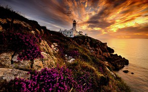Picture sea, landscape, rocks, dawn, lighthouse, morning, Ireland, Donegal, Fanad Head Lighthouse, County Donegal
