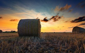 Picture field, sunset, hay