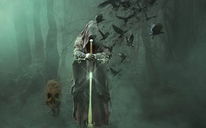 Wallpaper forest, trees, birds, fog, death, wolf, sword, vestments