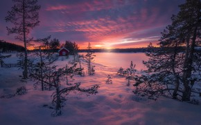 Picture Norway, Norway, Ringerike, Magic of Winter