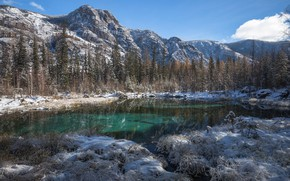 Picture winter, forest, grass, snow, trees, landscape, mountains, nature, lake, Blue, Bank, Altay, fir, Victor Zaitsev, …