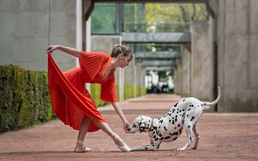 Picture dog, dance, girl