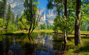 Picture greens, forest, the sun, trees, river, rocks, waterfall, CA, USA, Yosemite, Yosemite National Park