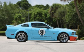 Picture Mustang, Ford, Saleen, side view, Coupe, 2007, Extreme, S281