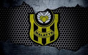 Picture wallpaper, sport, logo, football, Malatyaspor