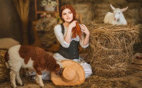 Picture girl, hat, hay, red, lamb, redhead, sheep, goat, goat, lamb, Диана Липкина