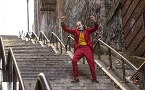 Picture paint, Joker, costume, ladder, Joker, Grimm, Joaquin Phoenix, Joaquin Phoenix, Joker 2019, Joker 2019