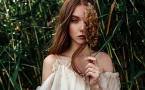 Picture grass, look, pose, model, portrait, makeup, hairstyle, Alice, brown hair, in white, nature, bokeh, Dushutin, …