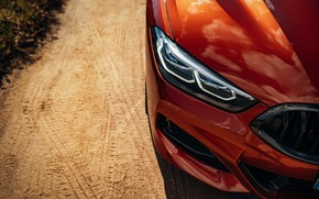 Picture coupe, the hood, BMW, bumper, Coupe, 2018, 8-Series, dark orange, M850i xDrive, Eight, G15
