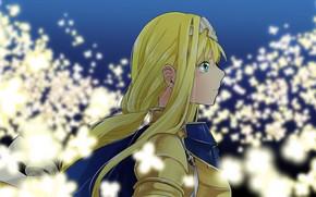 Picture girl, armor, Sword Art Online