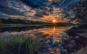 Picture the sky, trees, sunset, river, Aleksei Malygin