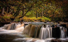 Picture autumn, forest, trees, branches, Park, stream, stones, England, waterfall, County Durham