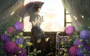 Picture girl, room, rain, hydrangea