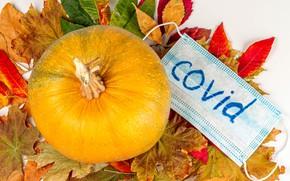 Picture autumn, leaves, Coronavirus, covid