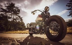 Picture Harley Davidson, Bike, Harley-Davidson, Motorcycle, Thunderbike, By Thunderbike, Uncle Pan