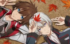 Picture autumn, leaves, guys, Kakumeiki Valvrave, Walgrave Liberator