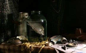 Picture water, network, the dark background, table, fish, Bank, shell, still life, items, composition, hooks, fishing …