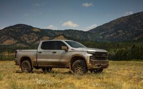 Picture field, grey, Chevrolet, pickup, Silverado, Z71, Trail Boss, 2019, Silverado LT