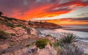 Picture landscape, sunset, nature, coast, beauty