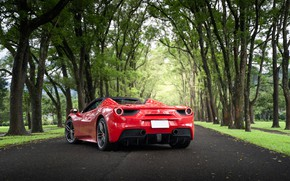 Picture road, trees, red, sports car, Ferrari 488 Spider