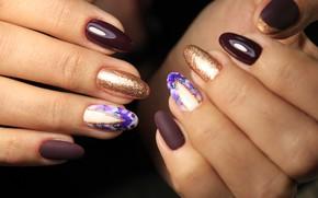 Picture colors, decoration, nails, sculpted