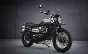 Picture bike, Triumph, 900, Motorbike, 2021, street-scrambler