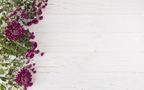Picture white, flowers, background, bouquet, Purple, wood, flowers, kompozicija