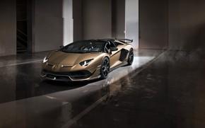 Picture machine, light, lights, Lamborghini, gate, sports car, boxes, roadster, Aventador, SVJ
