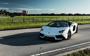 Picture Lamborghini, Predator, White, Aventador, VAG, Sight