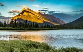 Picture grass, trees, landscape, mountains, nature, river, sunrise, morning, Canada, Albert, reserve, National Park, Banff, Banff, …