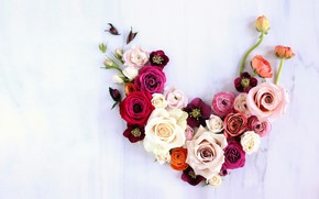 Picture flowers, background, roses, composition