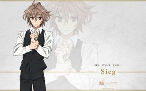 Picture guy, Fate - Apocrypha, Fate Apocrypha, homuncul, Zig