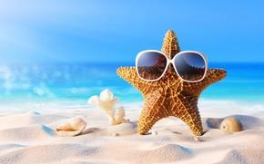 Picture sand, sea, beach, summer, star, vacation, glasses, shell, summer, beach, sand, vacation, starfish, sunglasses, seashells