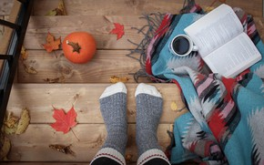 Picture autumn, comfort, heat, feet, Board, coffee, ladder, mug, Cup, stage, pumpkin, book, socks, drink, plaid, …