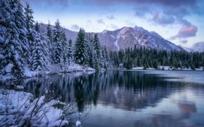 Picture winter, forest, mountains, lake, pond, ate, Washington, The cascade mountains, Gold Creek Pond, Washington State, …