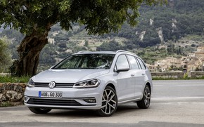 Picture tree, Volkswagen, Parking, universal, 2017, Golf Variant, white-gray