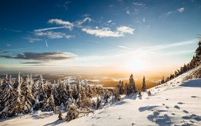 Picture winter, forest, the sky, the sun, snow, landscape, nature, mountain