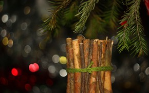 Picture branches, background, spruce, bokeh