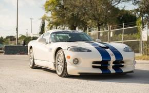 Picture White, Dodge Viper, 1997, Sports car, GTSR, Racing stripes