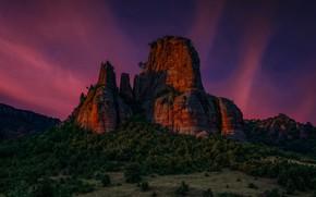 Picture landscape, night, nature, rock, forest, Bulgaria, Hog Kamk, Edie Adams