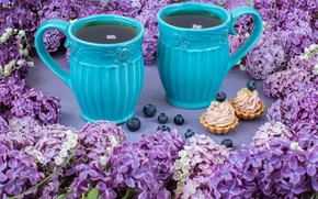 Picture tea, morning, Cup, lilac, cupcakes