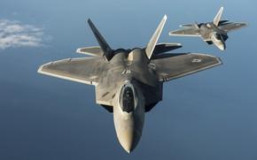 Picture Fighter, USAF, F-22 Raptor
