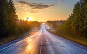 Picture road, summer, fog, morning