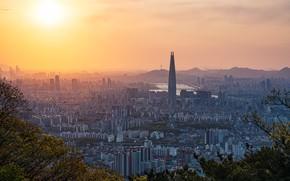 Picture South Korea, Neolmuni, Gyeonggi