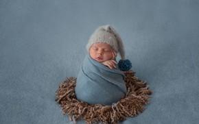 Picture child, sleeping, cute, cocoon, cap, shawl, Baby, Newborn