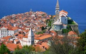 Picture sea, the city, home, Piran, Slovenia, Istria, the Peninsula