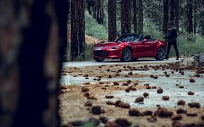 Picture forest, transport, car, bumps, MAZDA MX5 Miata